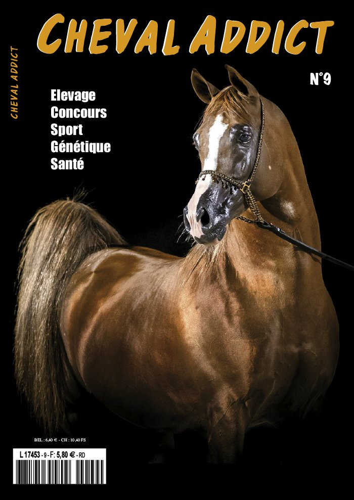 Cheval Addict du 10 septembre 2019
